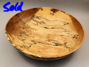 spalted red birch